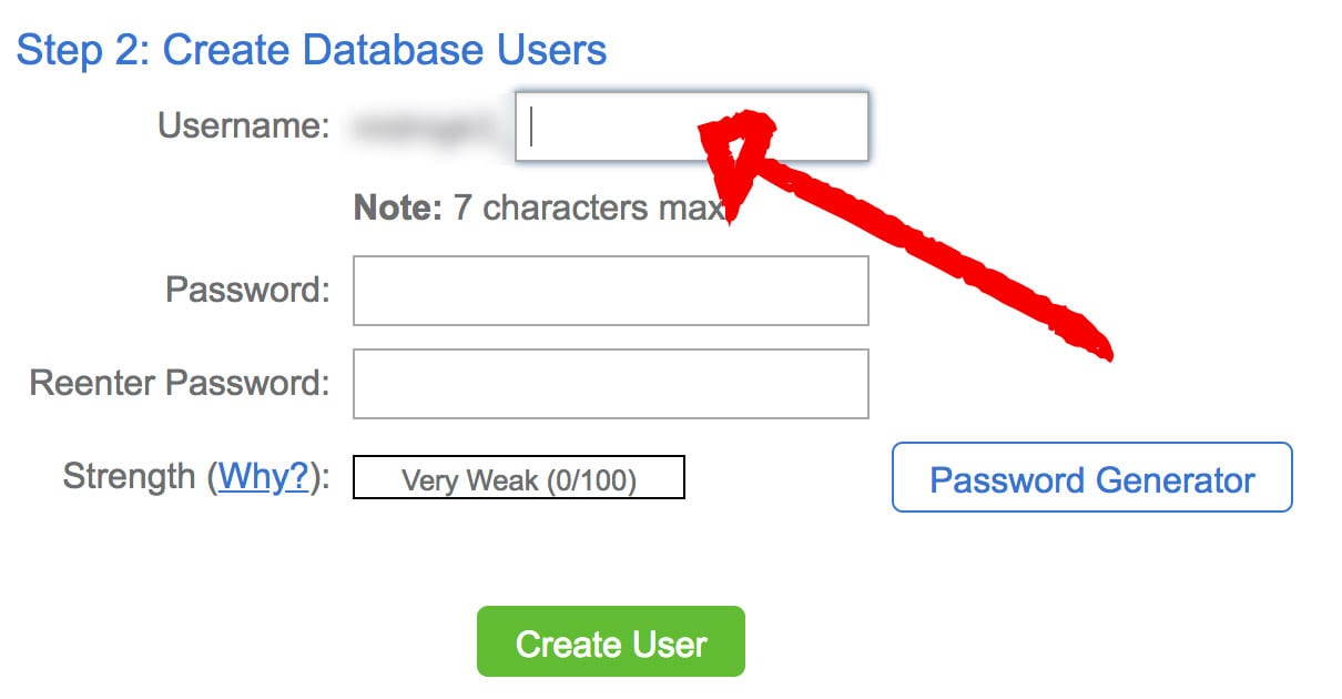 Database User